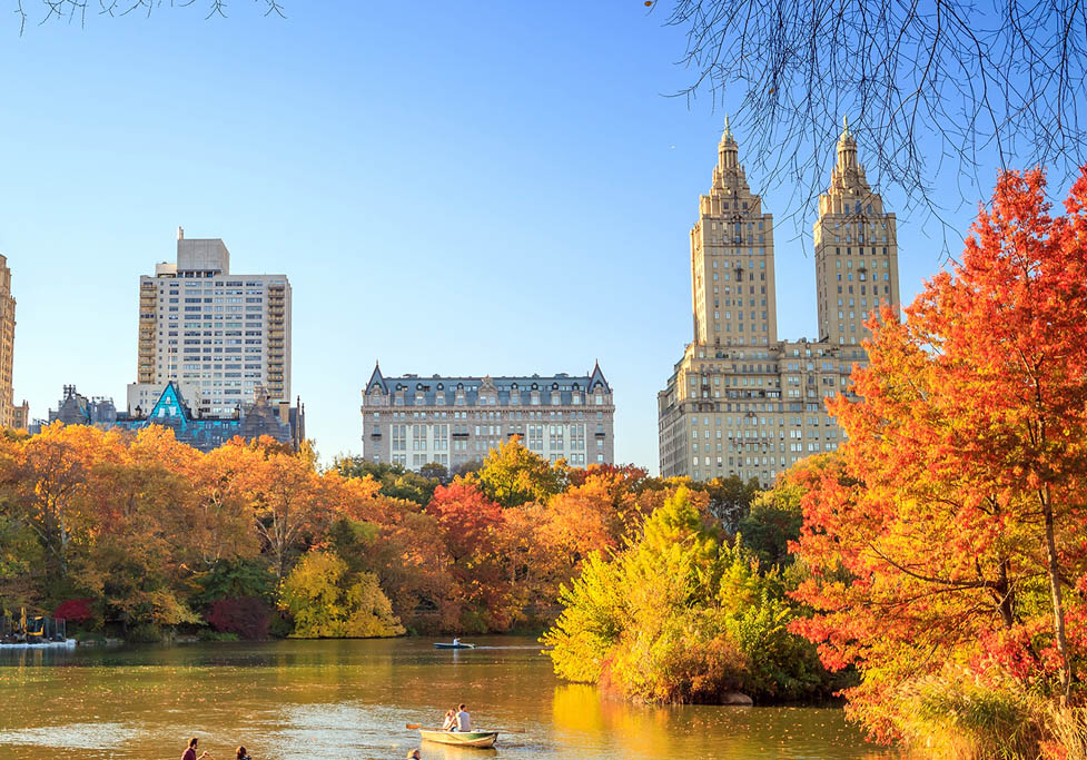 things we love | fall in new york city